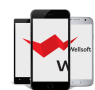 WELLSOFT, IT-компания